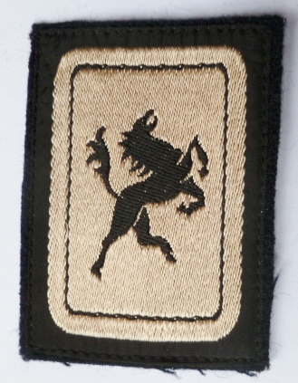 5° DB (1) DIVISION BLINDEE INSIGNE PATCH TISSU ARMEE FRANCE